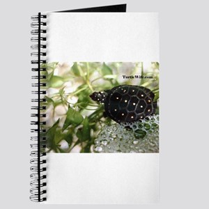 Spotted Turtle Journal