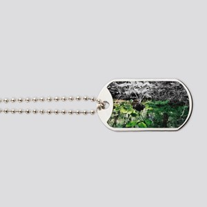 Reflections Dog Tags