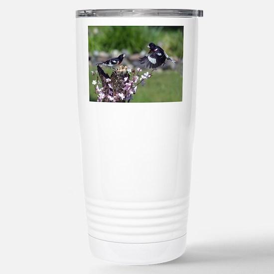 Rose-breasted Grosbeaks Stainless Steel Travel Mug