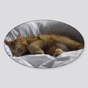 Afternoon Snooze Sticker (Oval)