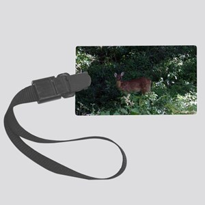 Friendly Deer near Ft Ancient Large Luggage Tag