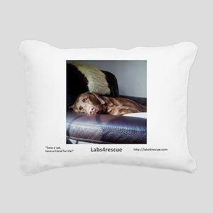 2013 Choco 01 Rectangular Canvas Pillow