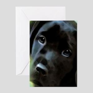 black lab Greeting Card