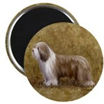 """Bearded Collie 2.25"""" Magnet (10 pack)"""