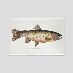Colorado River Cutthroat Trout Rectangle Magnet