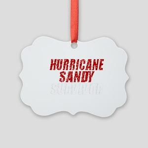 Hurricane Sandy Survivor Picture Ornament