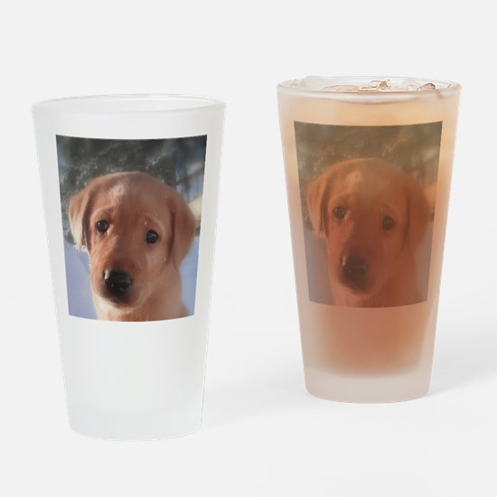 Yellow Lab puppy Drinking Glass