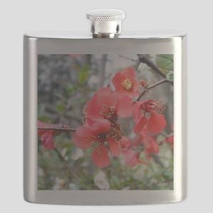 DSCF0414_9x12 Flask