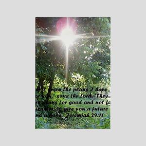 Sunbeam of Hope/Scripture Tall Rectangle Magnet