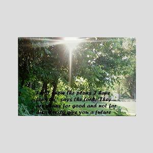 Sunbeam of Hope/Scripture Tall B Rectangle Magnet