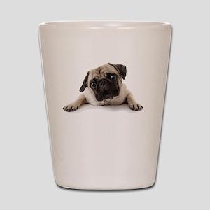 Pugs Not Drugs Shot Glass