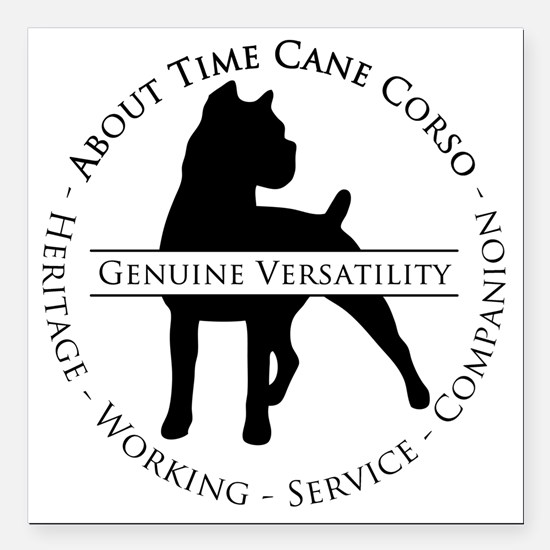 "About Time Cane Corso Lo Square Car Magnet 3"" x 3"""