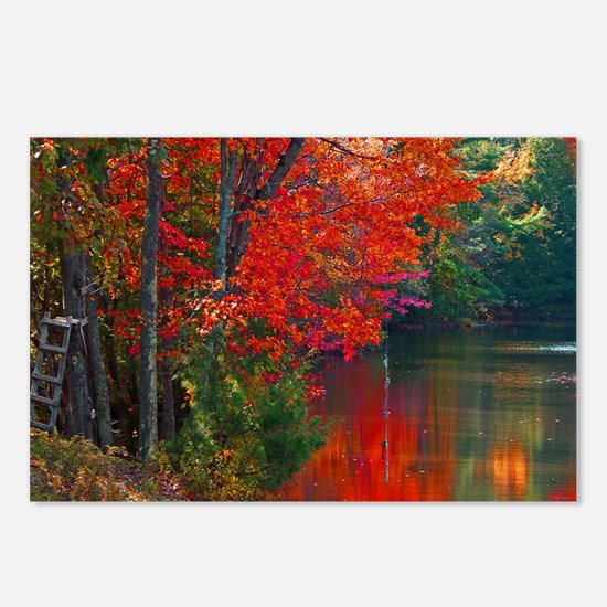 Rope Swings Fall View Postcards (Package of 8)