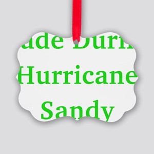 Made During Hurricane Sandy Picture Ornament