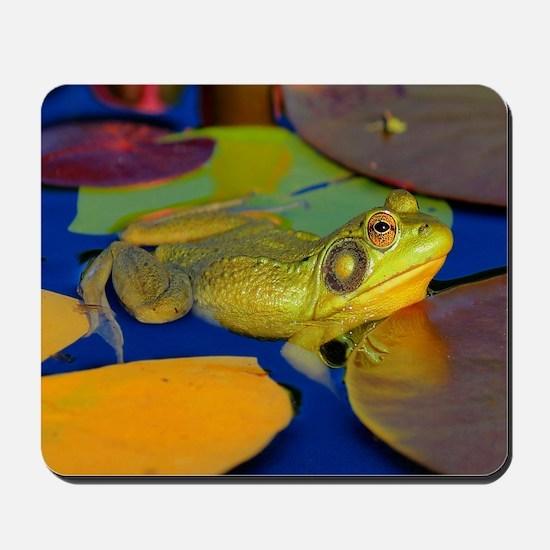 Gettin the Bullfrog Eye Mousepad