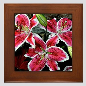 Lilly Explosion Framed Tile