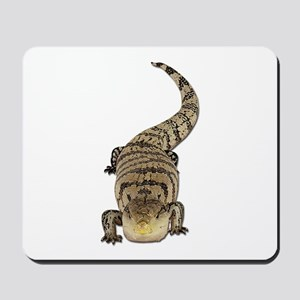 Blue Tongue Skink Mousepad