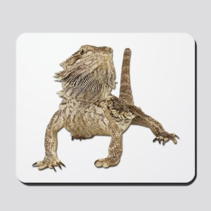 Bearded Dragon Photo Mousepad