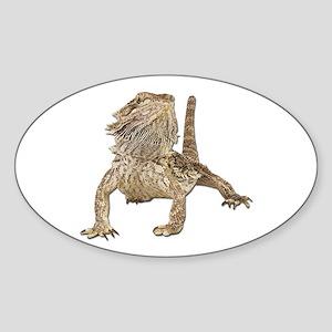 Bearded Dragon Photo Oval Sticker