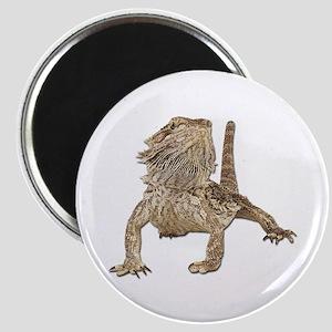 Bearded Dragon Photo Magnet