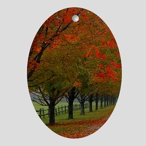 Dreamy Fall New England Drive Oval Ornament