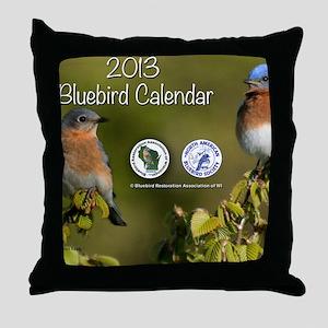2013 BRAW Calendar Throw Pillow