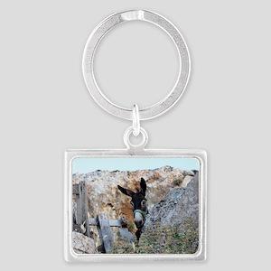 Donkeys! Landscape Keychain