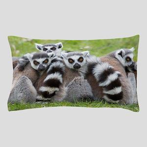 Ring-tailed Lemur (lemur Catta) Pillow Case