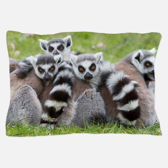 Ring-tailed Lemur (lemur Catta) Pillow Case