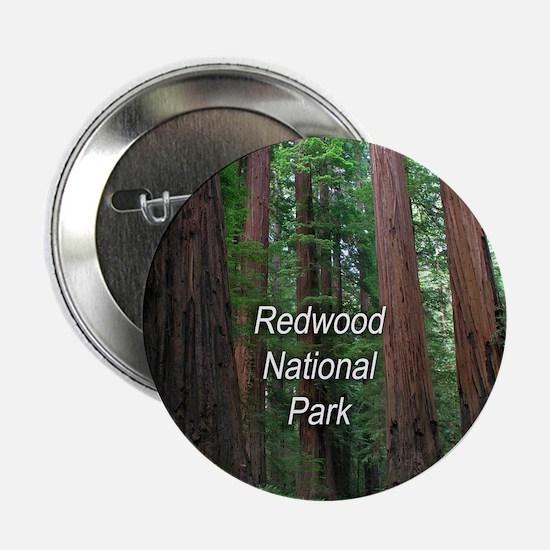 "Redwood National Park 2.25"" Button"