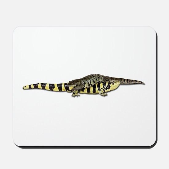 Salamander Photo Mousepad