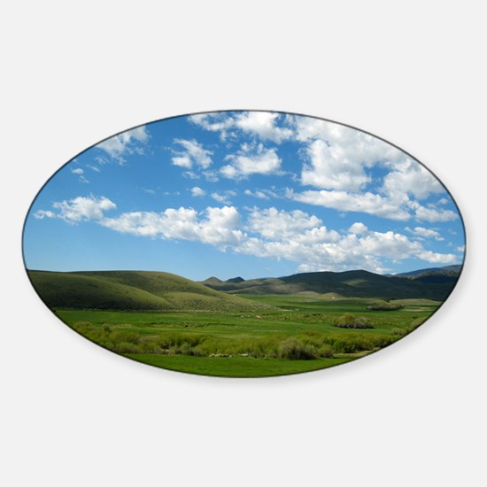 Summer Meadow Sticker (Oval)