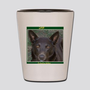 Shai - Australian Kelpie Shot Glass