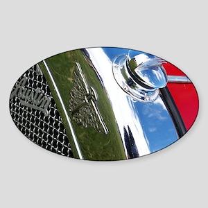 sjohnthing Sticker (Oval)