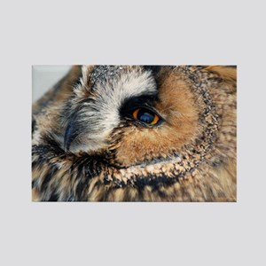 Eagle Owl Throw Pillow Rectangle Magnet