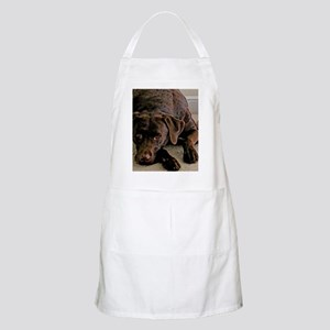 chocolate lab Apron