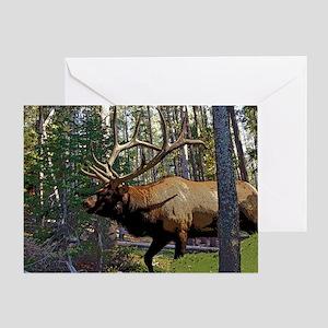 Bull elk in pines 6 Greeting Card