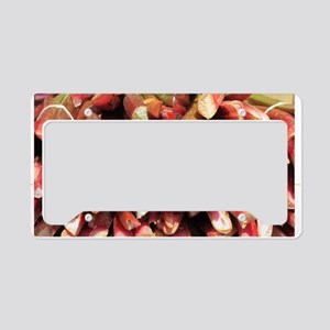Rhubarb License Plate Holder