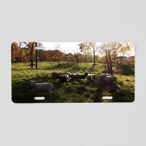 Autumn Sunset Aluminum License Plate