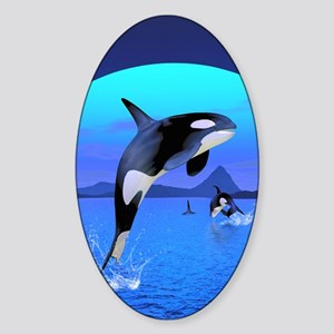 orca_84_curtains_835_H_F Sticker (Oval)