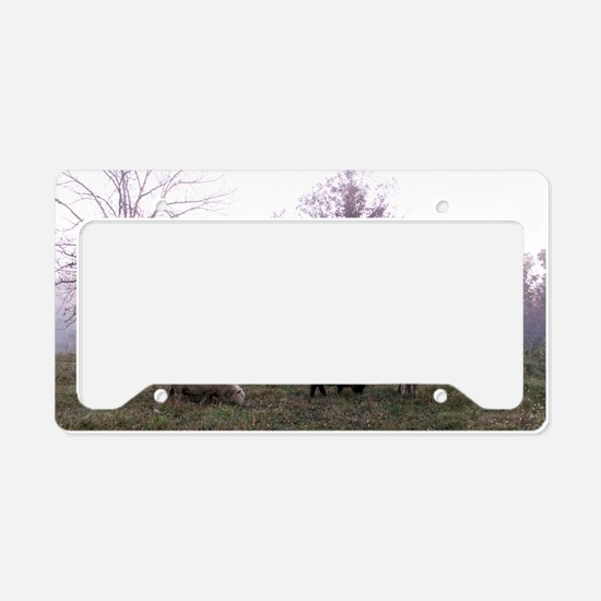 Late Fall License Plate Holder