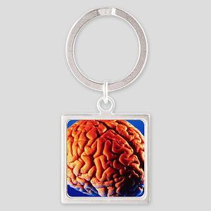 Human brain Square Keychain