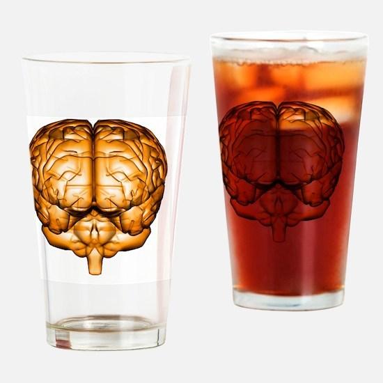 Human brain Drinking Glass