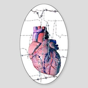 Human heart Sticker (Oval)