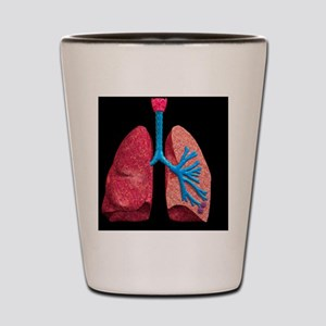 Human lungs Shot Glass