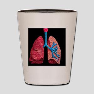 Human lungs Shot Glass