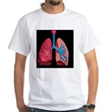Anatomy and physiology Mens Classic White T-Shirts