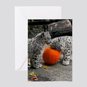 Snow Leopards and Pumpkin Greeting Card