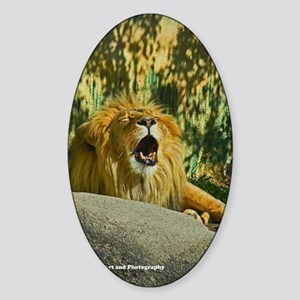 Tired Lion Sticker (Oval)