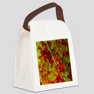 FallVineLeafSQ Canvas Lunch Bag
